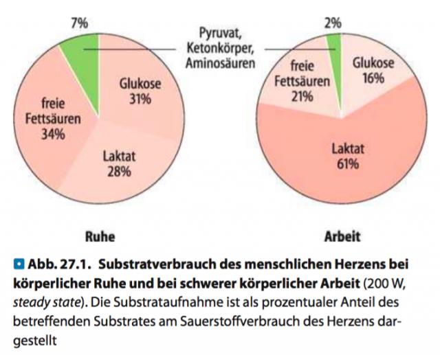 Quelle: Schmidt et. al., Physiologie des Menschen mit Pathophysiologie (2007)